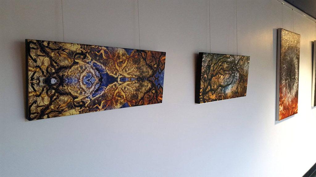 Baumstrukturen Suat Sensoy in der Galerie Piazza / Schweiz. Foto: Robert Varadi